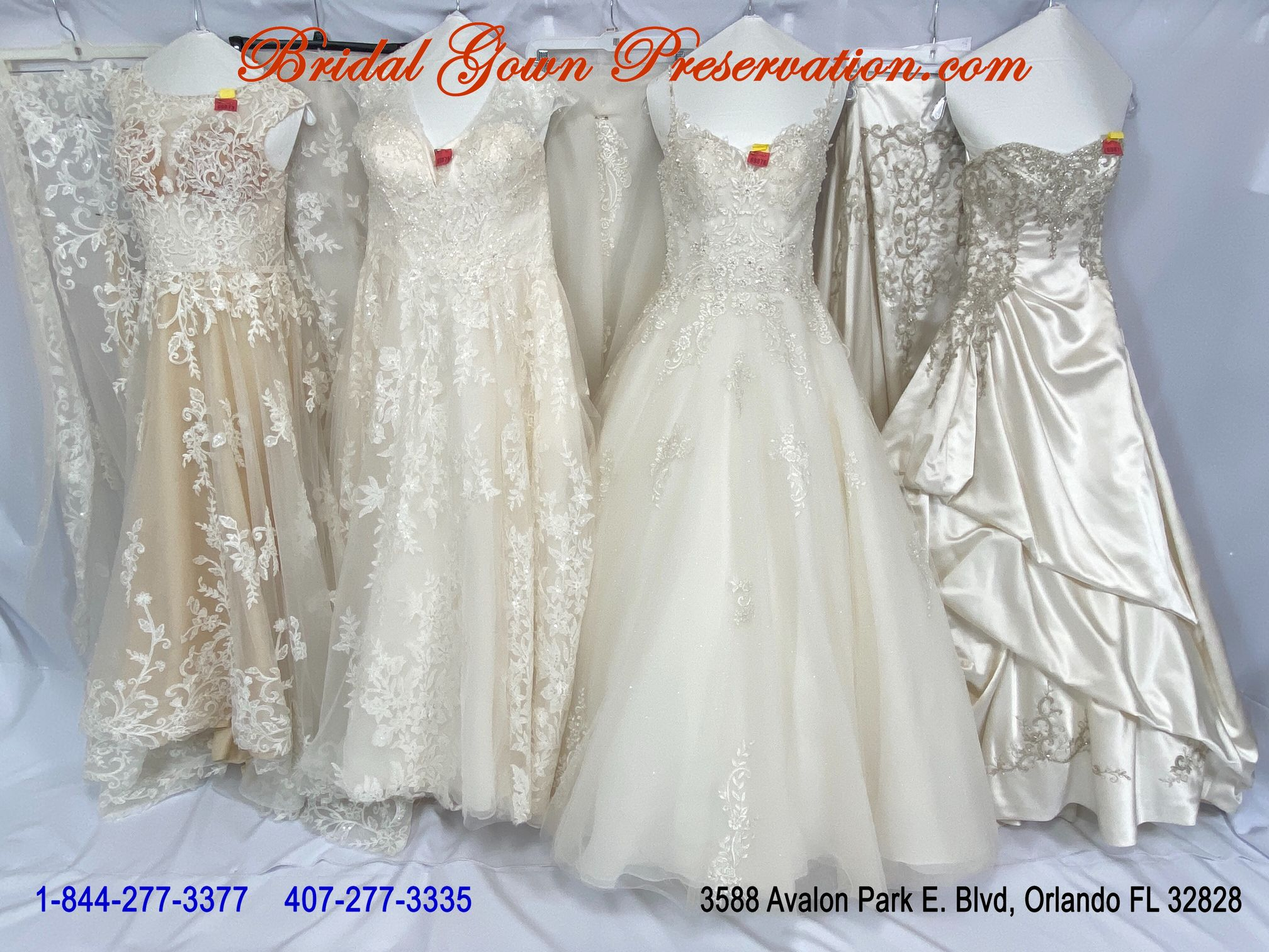 4 Wedding Gowns processed-by BridalGownPreservation.com